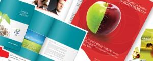 slide2_brochure